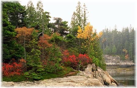 Acadia National Park (photo by Howard Blichfeldt)