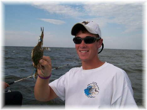 Crab caught on Chesapeake Bay 9/8/10