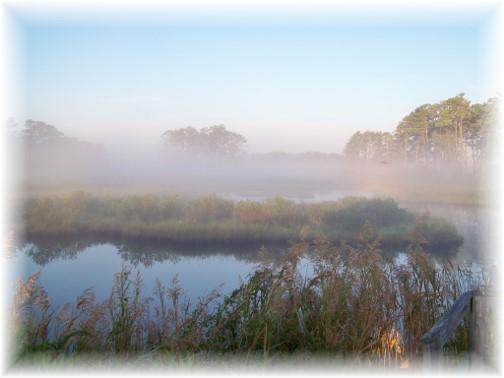 Chincoteague Bay (Photo by Nancy Martin)