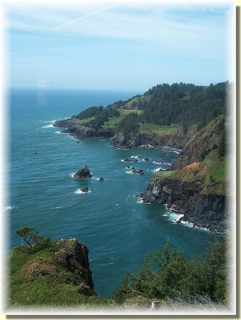 Oregon coastline (photo by Georgia M.)