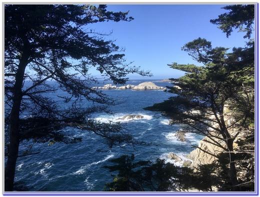 Pacific coast (Photo by Steve Ephraim)