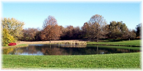 Farm pond in autumn