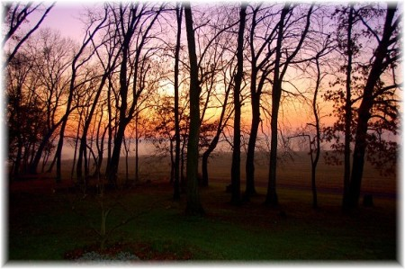 Autumn morning (Photo by Dris High)