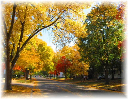 Autumn scene in Cedar Rapids, Iowa (photo by Lori)
