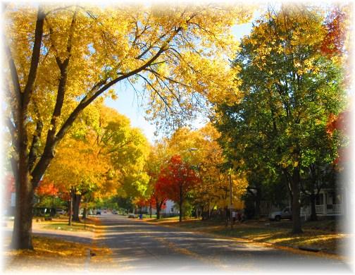 Autumn scene in Cedar Rapids, Iowa (photo by Lori)