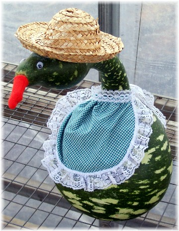 Dressed gourd