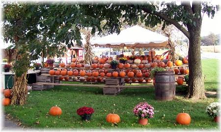 Pumpkin stand Lancaster County