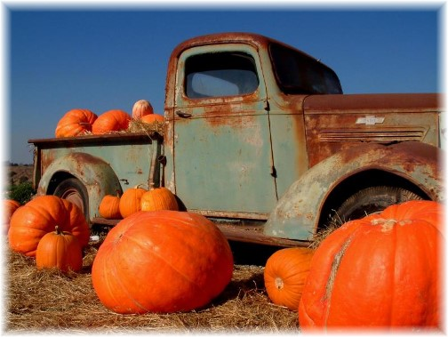 Truck and pumpkins (photo by Nick Nichols)
