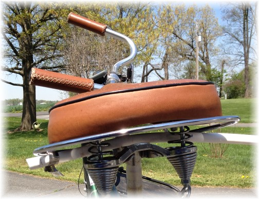 Bicycle leash