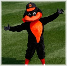 Orioles mascot