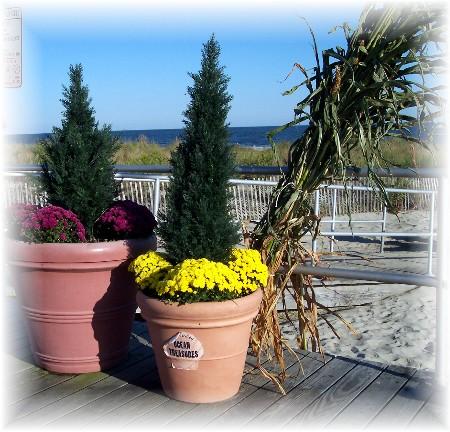 Flower arrangement on the Ocean City, NJ boardwalk