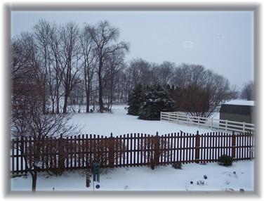 Snow scene 2/14/07 from Ester's window