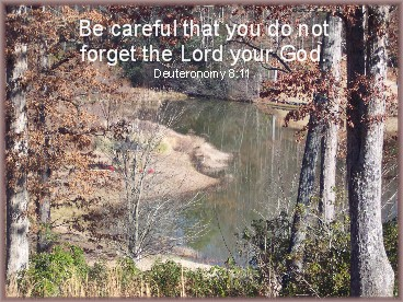 Photo of South Carolina pond with Scripture