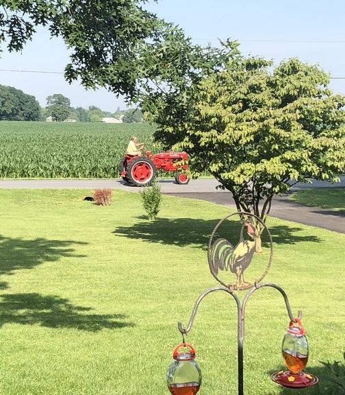 1953 FarmAll tractor 6/29/19