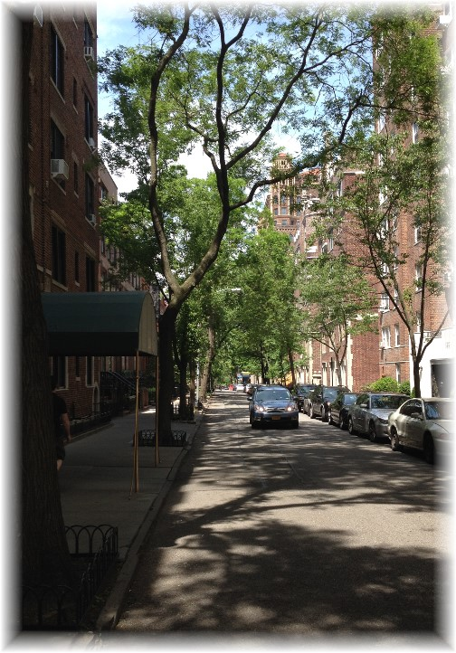 Shady Street in Brooklyn 5/26/14