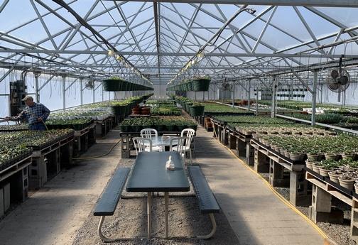 Greenhouse at The Carrot Barn near Schoharie, NY 3/15/20