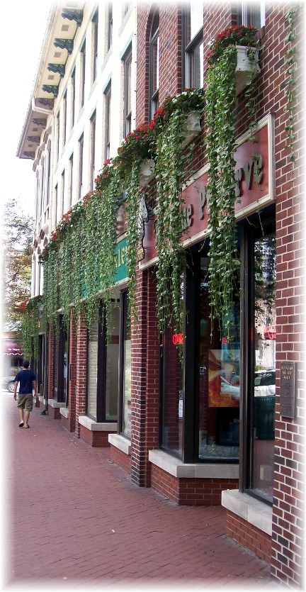 Windowboxes in Bloomington Indiana