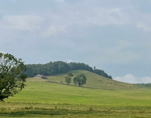 Scene from Blue Ridge Parkway