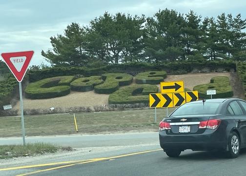 Cape Cod welcome shrubbery
