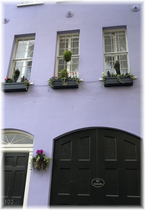 Charleston, SC window boxes