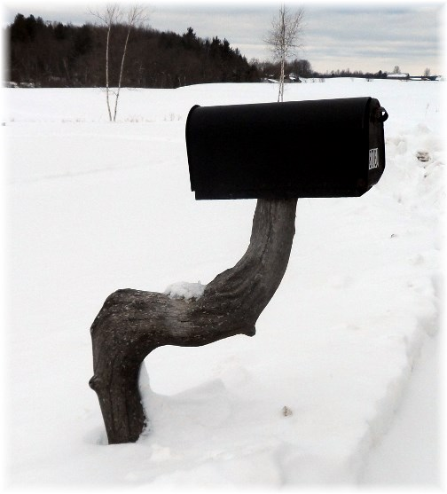 Rural mailbox, northern New York 3/22/13