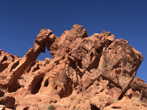 Elephant Rock at Valley Of Fire state park, Nevada 9/30/19