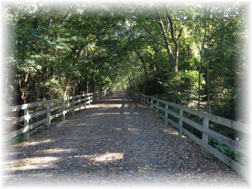Junction and Breakwater trail near Rehoboth Beach DE