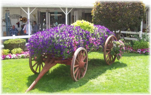 Shipshewana flower cart