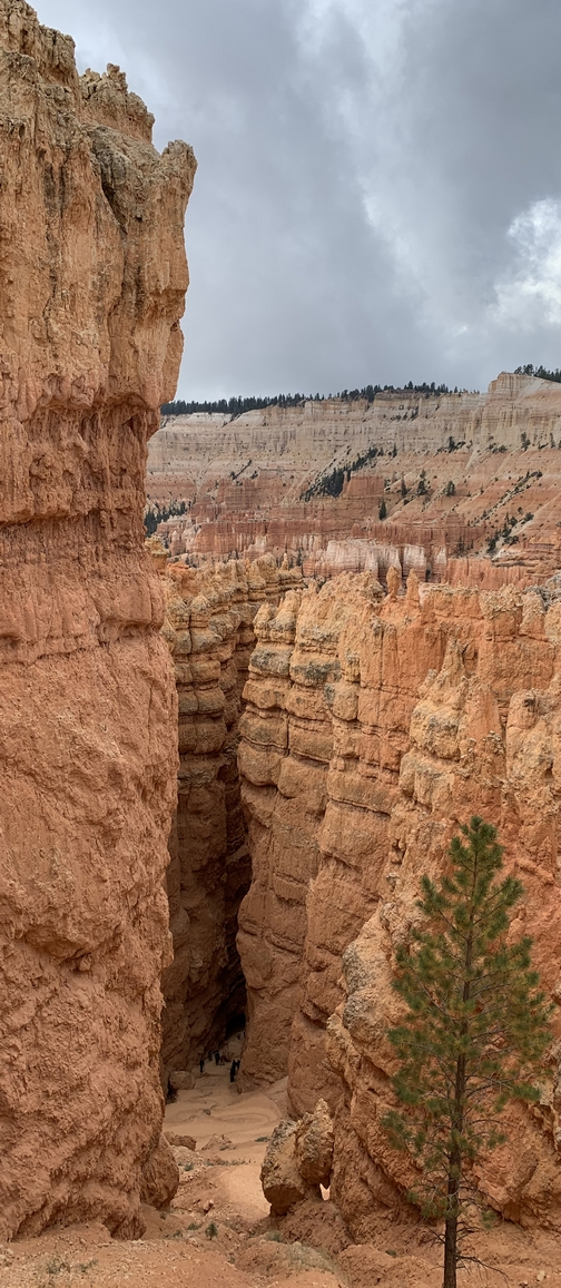 Bryce Canyon Wall Street 9/28/19 (Click to enlarge)