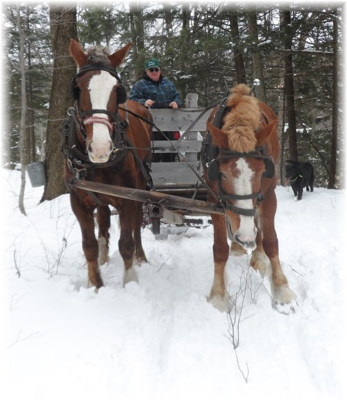 Yancey's sugarbush sleigh ride 3/24/13