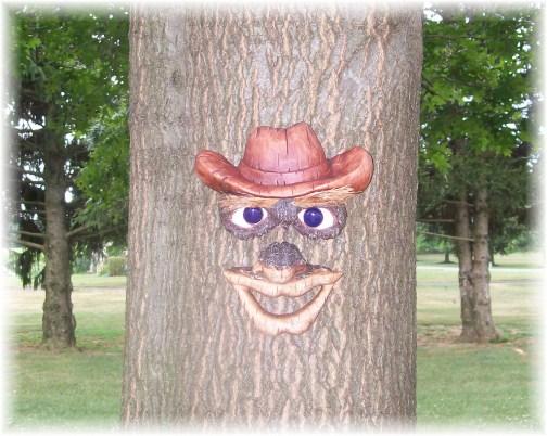 Tree face 7/15/12