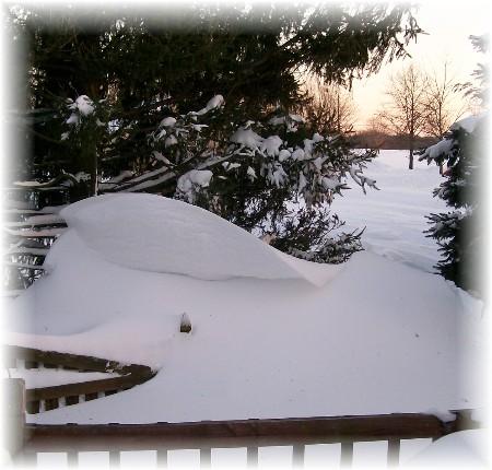 Large snow drift 2/11/10