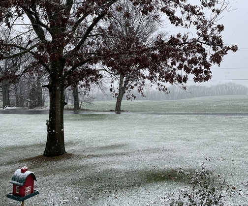 First covering snow of the season!