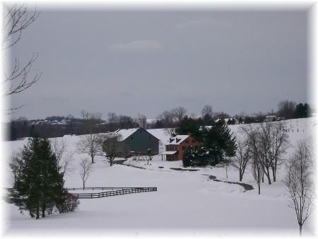 Meadow View farm scene