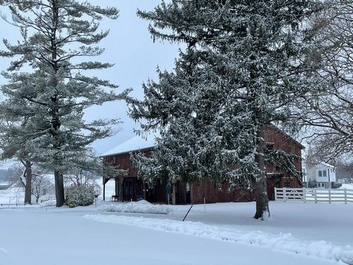 Silverstone Manor barn