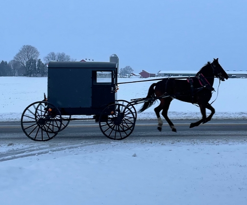 Strasburg Pike horse and buggy