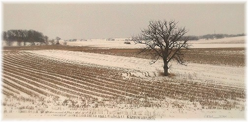 Wisconsin winter scene (photo by GM)